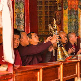 Monks Praying inside the Monastery, Kalimpong by Manabendra Dey - People Portraits of Men ( buddhaism, monks praying inside the monastery, monastery, kalimpong )