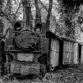 Old litlle train.. Ćiro. by Željko Salai - Black & White Objects & Still Life