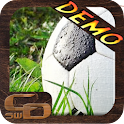 Demo Live Soccer Wallpaper icon
