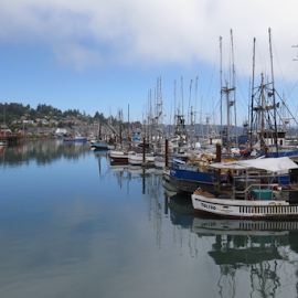 From Newport's Bayfront in Oregon by Vonelle Swanson - Transportation Boats