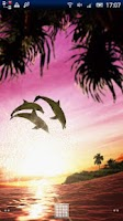 Screenshot of Dolphin Sunrise Trial