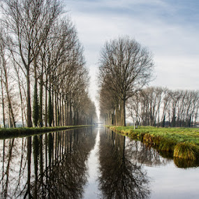 Channel by Arti Fakts - Landscapes Waterscapes ( mirror, water, field, calm, symetry, sky, trees, rest, reflexion, channel, canal,  )