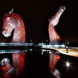 Kelpies Reflection by Wendy Milne - Buildings & Architecture Statues & Monuments ( scotland, reflection, kelpies, horses, night )