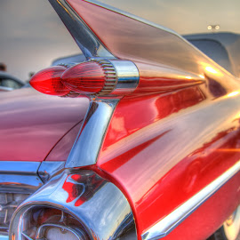Fin-Tastic by Paul Brady - Transportation Automobiles ( cadillac, cars, fin, fifties, automobiles. classic )