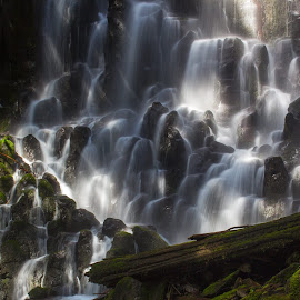 Mt Hood National Forest, taken 6/8/14 by Sandy Wilson - Landscapes Waterscapes