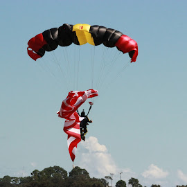 by Mandy Boyd - Sports & Fitness Other Sports ( jumping, florida, vero beach, parachute, airshow )
