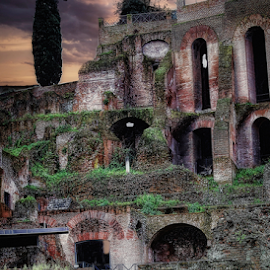 Ancient Rome  by Doreen Rutherford - City,  Street & Park  Historic Districts