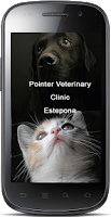 Screenshot of Pointer Clinic Estepona