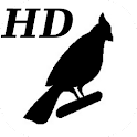 HD-Black & White Baby Cards icon