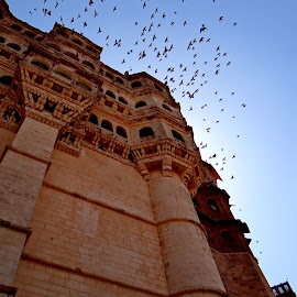 Jodhpur Palace by Arup Maitra - Buildings & Architecture Other Exteriors