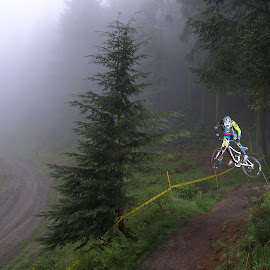 Out of the woods by Turnip Towers - Sports & Fitness Cycling ( trees, mountain bike, forest, misty, jump )