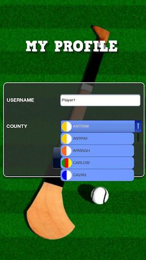 Flick Hurling - screenshot