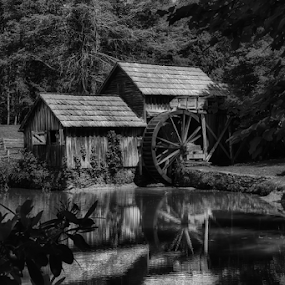 0062-Mabry Mill in B&W by Fred Herring - Black & White Buildings & Architecture (  )