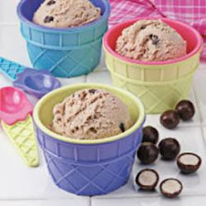 Chocolate Malted Ice Cream