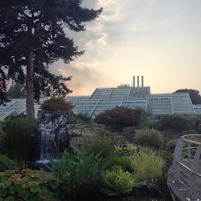 Kew by Robert  Walton - Buildings & Architecture Other Exteriors