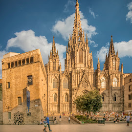 Cathdral - Barcelona by John Myrianthousis - Buildings & Architecture Places of Worship