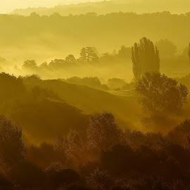 Fog by Barbara Podlahová - Landscapes Weather