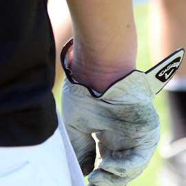 Calloway by Taryn Gillespie - Sports & Fitness Golf ( tarynchantelphotography, golfer, grass, green, calloway, white, sports, golf, glove, photo, photography )