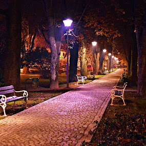 Sjećanje by Jelena Puškarić - City,  Street & Park  City Parks ( , mood factory, color, lighting, moods, colorful, light, bulbs, mood-lites, city at night, street at night, park at night, nightlife, night life, nighttime in the city )
