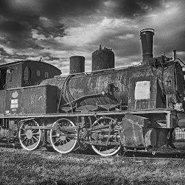 Locomotive by Maja  Marjanovic - Transportation Trains ( railway, locomotice, transportation, trains,  )