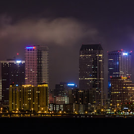 Tampa Skyline by Marty Sterling - Buildings & Architecture Office Buildings & Hotels ( skyline, florida, buildings, tampa, city )