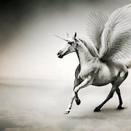 Mutant Unicorn by Carmen Mok - Illustration Animals ( horse superimpose design unicorn )