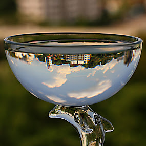 Dolphin Glass by Lolotan Dalimunthe - Artistic Objects Other Objects ( water, dolphin, blue sky, glass, lolotan, figurine )