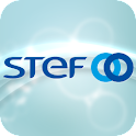 STEF -  Publication icon