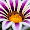 DSC_5635-noname.jpg