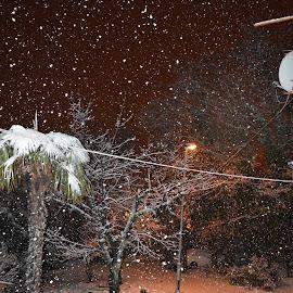 SnOw by Klaudio Baglioni - Novices Only Landscapes ( snow, snowy )