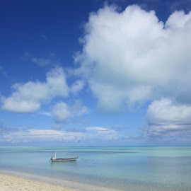 Lakshadweep, India by Paravanparambil Rajkumar Jayachandran - Landscapes Beaches ( lakshadweep, india )
