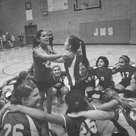 Cougars by Kallie Snyder - Sports & Fitness Basketball ( basketball, winners, junior high, cheering, celebrate,  )