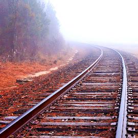 Into the Fog by Carol Plummer - Transportation Railway Tracks