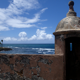 The Fort by Lolita Sees - Buildings & Architecture Public & Historical ( puerto rico, nature, fort, skies )