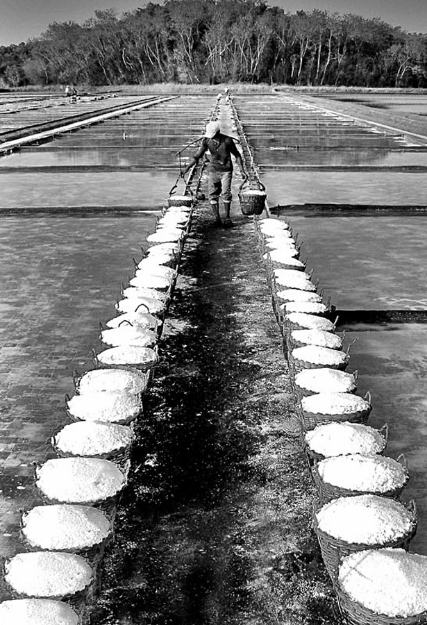 SALT FARM by Edwin   S. Loyola - News & Events World Events ( black and white )