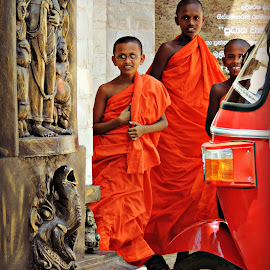 Monks in Training by Tamsin Carlisle - People Street & Candids ( temple, robes, orange, buddhism, tuktuk, monks, boys, buddhist, sri lanka )
