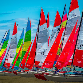 Yacht Race by Nick Foster - Sports & Fitness Watersports ( water, boats, yacht, sea, ocean, sailboat, people, island, sailing, racing, food, drink, festival, yacht club )
