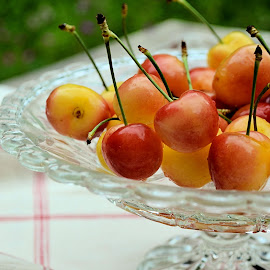 White cherries by Heather Aplin - Food & Drink Fruits & Vegetables ( dish, cherry, juicy, fruit, summer, cherries, garden, stalks )