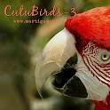 Cutu-Birds-3 icon