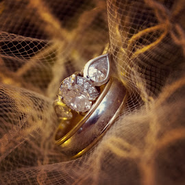Rings by Jacenta Grover - Wedding Details ( diamons, details, wedding, rings, bride and groom )