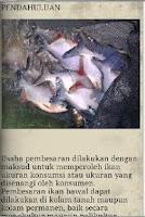 Screenshot of Budidaya Ternak Ikan