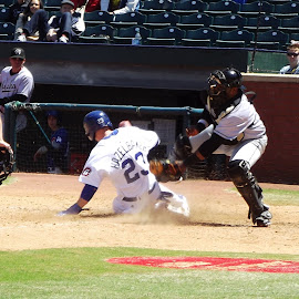 by Brian Baggett - Sports & Fitness Baseball (  )