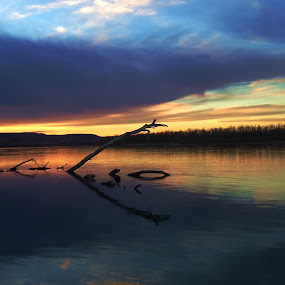 Graner Ness by Dustin White - Instagram & Mobile iPhone ( clouds, water, reflection, sunset, log, river )