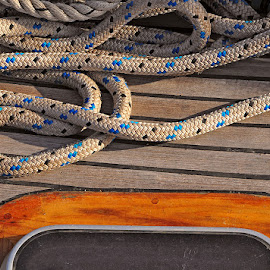 Herringbone by Pete Watson - Abstract Patterns ( timber, wood, rope, sailing, yacht, deck, sheet )