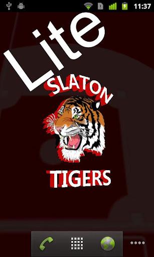 Slaton Baseball LITE
