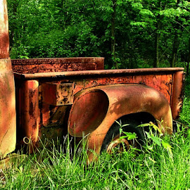 Orange Truck Bed by Julie Dant - Transportation Automobiles ( trucks, antique trucks, truck beds, rusted vehicles, orange trucks, old truck )