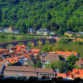 Heidelberg - Germany by Daniel Jagadisan - City,  Street & Park  Historic Districts (  )