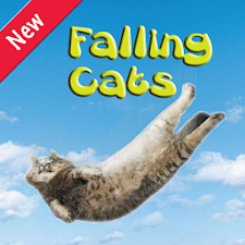 Falling Cats Saving Barsik