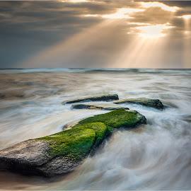 Green before the sun by Johan Steyn - Landscapes Waterscapes ( clouds, stream, green, rock, streams, flow, seascape, light, sun )
