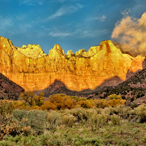 Towers of the Virgin Sunrise by Roxie Crouch - Landscapes Mountains & Hills ( sagebrush, towers of virgin, national park, towers, utah, sunrise, zion, red cliffs,  )